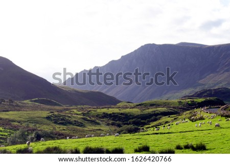 A view of the hills of Snowdonia, Wales.  A green valley with sheep grazing in the fields and with surrounding high hills.  Picture shows typical Welsh mountain scenery, and hill farming. stock photo