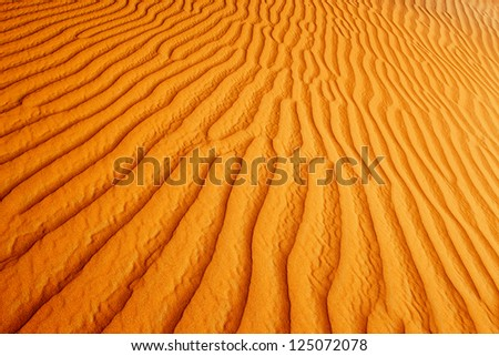 A view of the rolling sand dunes of the Arabian desert