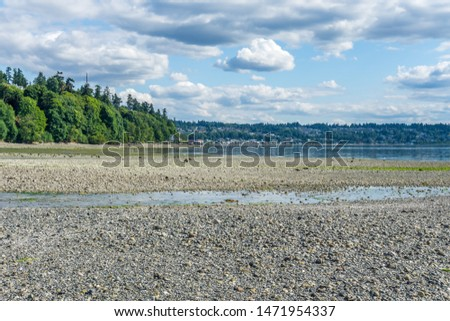 A view of the shoreline at Saltwater State Park in Des Moines, Washington.