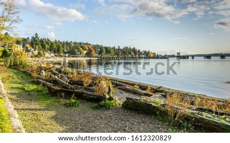A view of the shoreline near the ferry terminal in West Seattle, Washington.