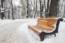 A view of the wooden bench near the cleaned path of tile, which turns into the depths of a winter park covered with a large layer of snow