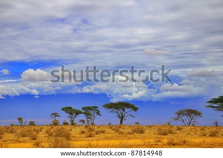 A view over an African plain in Kenya. Amboseli Natural Park.