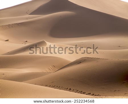 A view over some smooth brown sand dunes in the Sahara desert in Erg Chegaga in Morocco in Morocco in the spring during a hot sunny day.