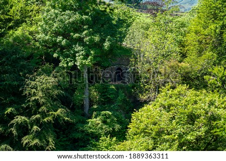 A viewing platform amongst the trees that provides a viewpoint for the Falls of Acharn on the Rob Roy Way and near Loch Tay in the Scottish Highlands, UK. Zdjęcia stock ©