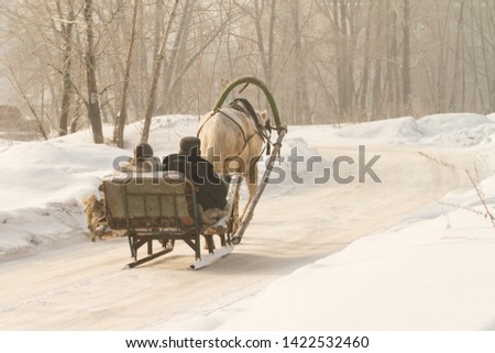a villager in a village goes in a makeshift sleigh and runs a horse, a clear winter day Foto stock ©