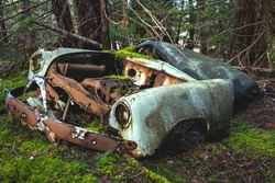 A vintage old white and blue automobile car wreck rusts and decomposes in an abandoned forest salvage yard in Northern Gulf Islands, British Columbia, Canada.