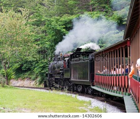 A vintage steam engine leading a tour train.