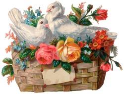A vintage Valentine illustration of a love birds in a basket (circa 1890)