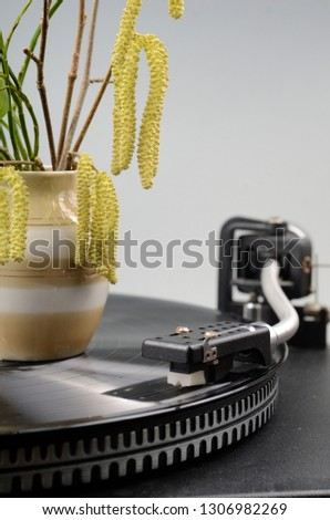 A vinyl record in the record player with a vase with spring bush branches on grey background #1306982269