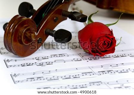 A violin peg-head, red rose and sheet music