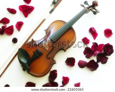 A violin (stringed musical instrument) and bow with rose petals on a white background.