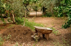 A wagon/wheelbarrow next to manure hill and spade, under olive trees.