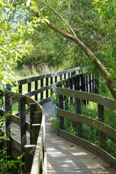 A walkway bridge at Coombe hill nature reserve
