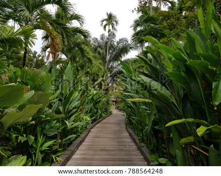 A walkway in a Sheraton resort in Thailand that fulled with palm green trees. Nice vacation hotel.
