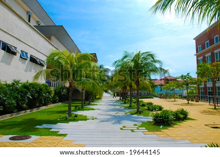 A walkway in in building area lined with palm trees