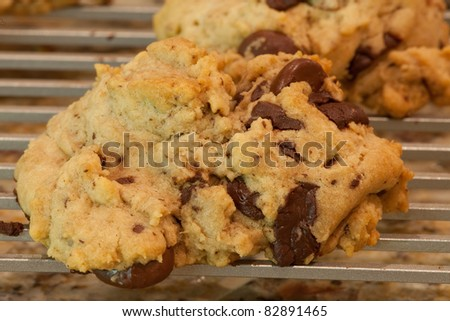 A warm chocolate chip cookie, fresh out of the oven, cooling on an aluminum rack