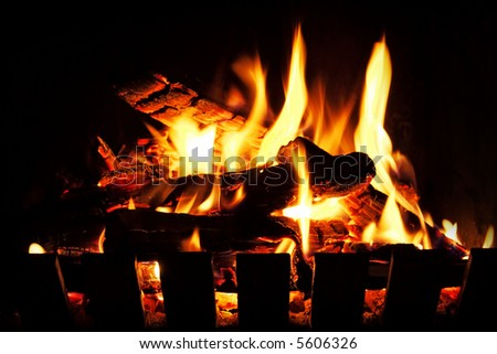 A warm, inviting open wood fire.