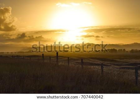 A warm sunset above a dark rural environment in Gisborne, New Zealand. #707440042