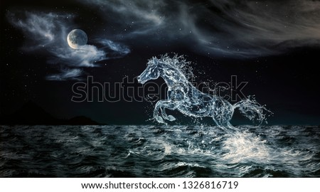 Stock Photo A Water Horse Emerging from the Sea
