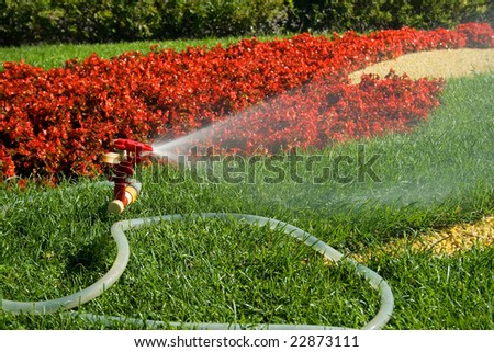 A water sprinkler irrigating grass and flowers