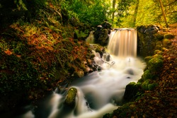 A waterfall at Birr Castle and Gardens