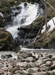 a waterfall next to the MacIntosh Brook Trail, Cabot Trail, Cape Breton Highland National Park, Nova Scotia, Canada, May