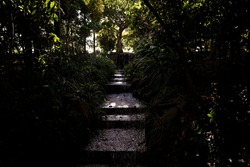 A waterfall over stone steps in a dark forest with only spots of light shining through