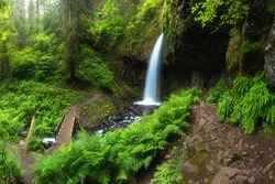A waterfall with a bridge in deep forest cascades is located in the Columbia River Gorge in Oregon Beautifull waterfall background
