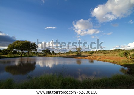 A waterhole photographed in summer in the Kruger National Park
