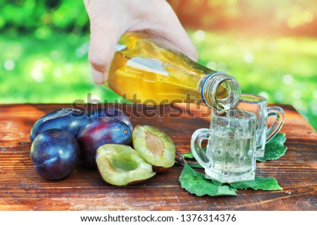 A well-known brandy rakia slivovitz in shot glasses with plums on wooden table in orchard.  Traditional Serbian brand alcoholic drink of organic production.Human hand pouring a well-known brandy rakia #1376314376