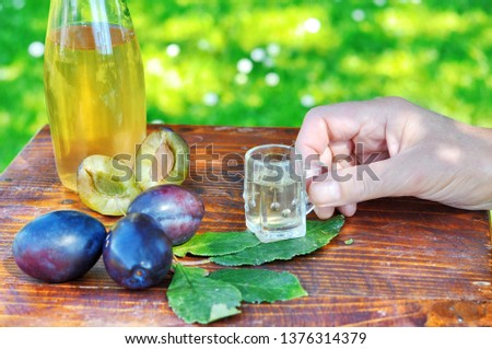 A well-known brandy rakia slivovitz in shot glasses with plums on wooden table in orchard.  Traditional Serbian brand alcoholic drink of organic production.Human hand pouring a well-known brandy rakia #1376314379