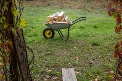 A wheelbarrow full of chopped wooden trunks.