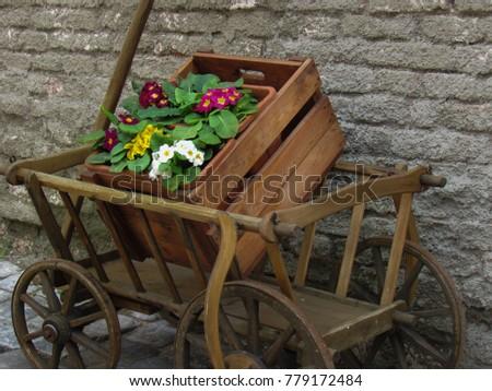 A wheelbarrow with a box of flowers near the stone wall #779172484