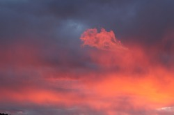 A whimsical cloud appeared in the sunset sky