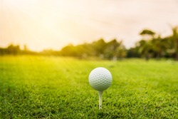 A white golf ball on golf pin green grass near hole with golf course background , green tree sun rays.