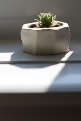 A white planter on a window sill casting a shadow