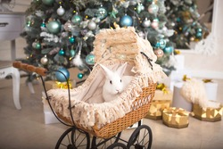 A white rabbit sits inside a retro baby stroller for dolls. Christmas decor, Christmas tree with lights garlands. New Year. Pets at home