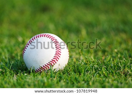 A white used baseball on the fresh green grass with copy space