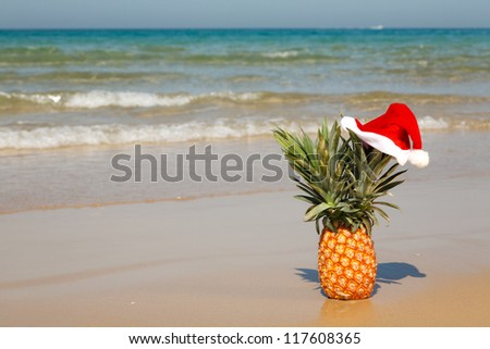A whole pineapple at santa hat on a sea background .
