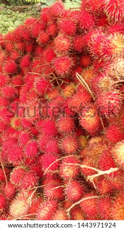 A wholesale marketer sells stacks of lychees (Nephelium lappaceum) in roadside.