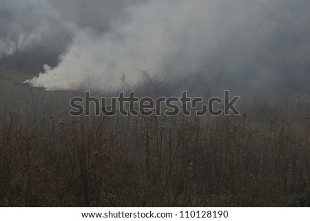 A wild brush fire, one of many which often results from hot dry conditions. - stock photo