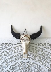A wild buffalo skull with a pattern design on a white wall