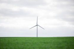 A wind turbine on the horizon with a fresh, green field in the foreground and a cloudy sky in the background