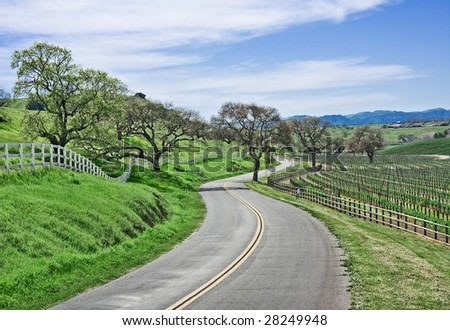 A winding country road through California wine country.