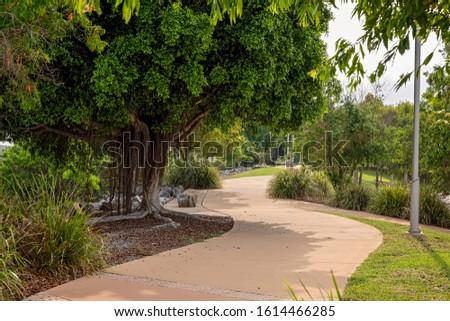 A winding recreational walking track