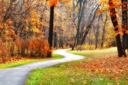 A winding walking path through the Cleveland Metro Park on an autumn day.
