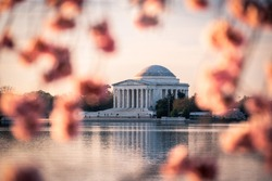 A window of Cherry Blossoms looking out across the Tidal Basin of Washington DC towards the Jefferson Memorial at sunrise.