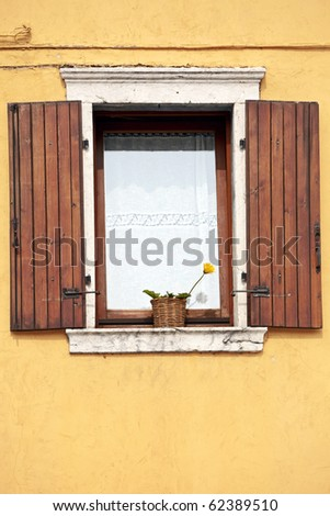 A window with open wooden shutters, lace curtains and yellow flower against a plastered textured wall.