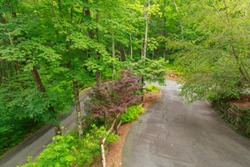 A windy driveway in the southern Appalachian Mountains also know as Little Switzerland, in the southwest corner of North Carolina.