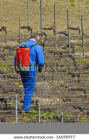 A wine farmer sprays his vines in early spring